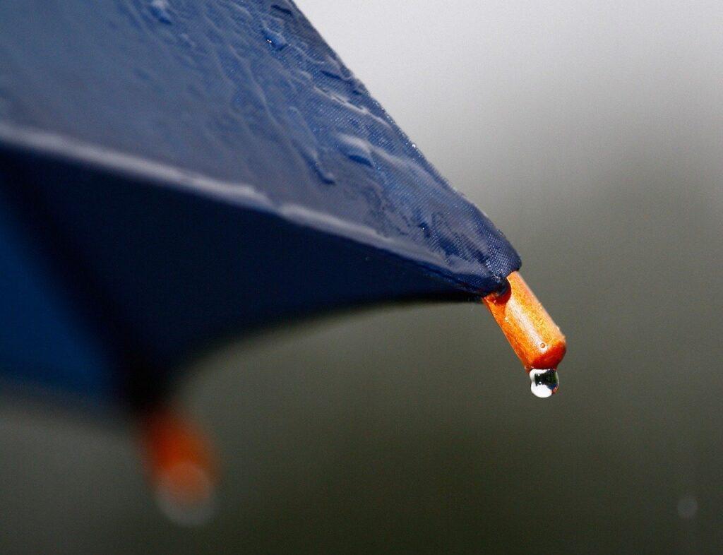 rain, umbrella, drip